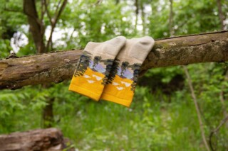 #funfact I've learned that I enjoy taking photos of socks...in nature. 🌳🌲🌿 Especially when @farmtofeet is one of your fav sock brands. (From an exciting work project I'm working on...) #sockphotography #outdoors #farmtofeet #socksfetish