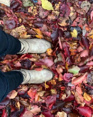 Imma take a second to be #basic because THESE LEAVES 😱💁🏻♀️🍂🍁 #autumn #fallleaves